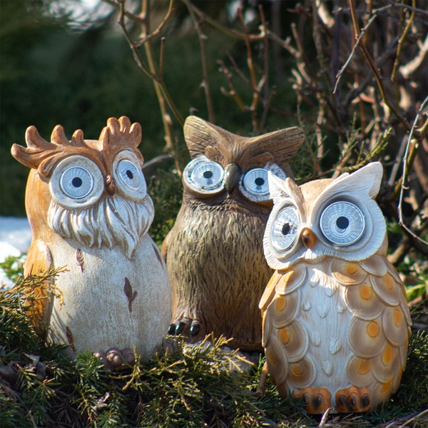 Set of 3 Assorted Owls with Light-Up Solar Eyes