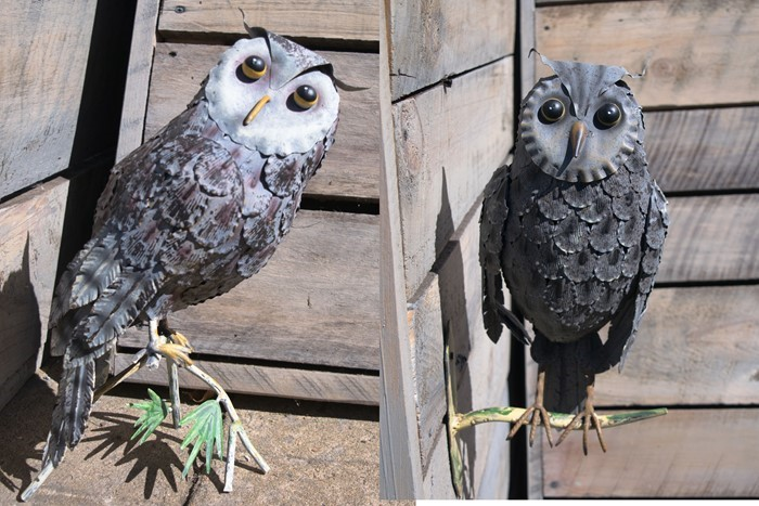 Set of Two Owls on Tree Branch