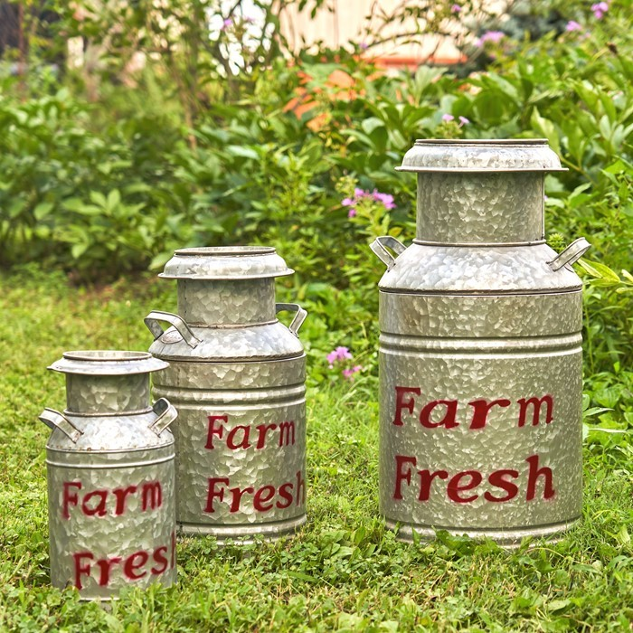 Set of 3 Galvanized Old Style Milk Jug Planters