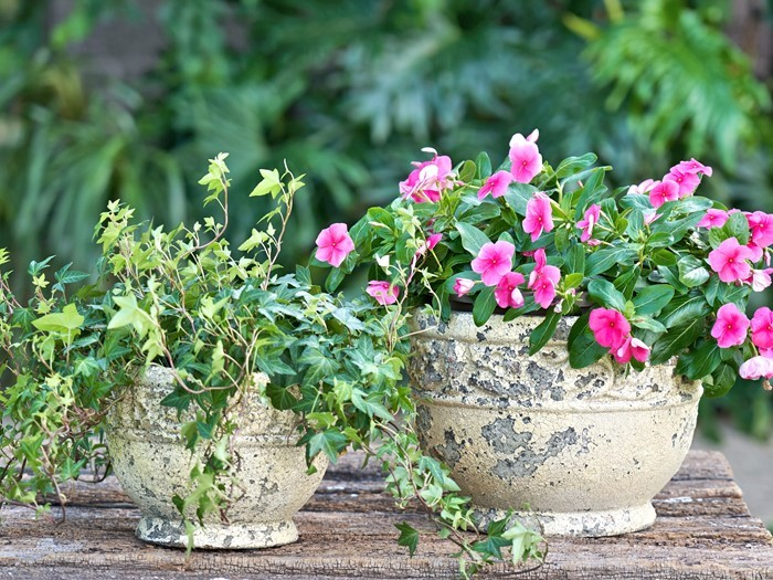 Set of 2 Round Flower Planters in Rust