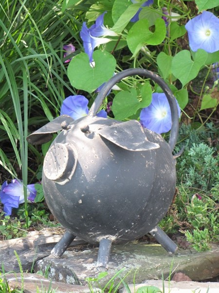 LARGE ROUND PIG WATERING CAN