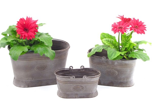 Set of 3 Iron Oval Planters with Moving Handles
