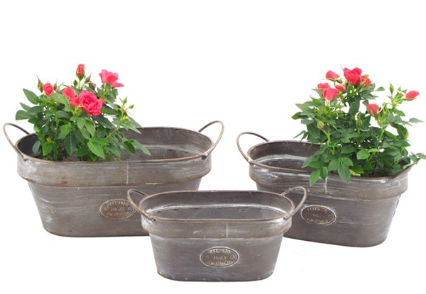 SET OF 3 IRON OVAL PLANTERS WITH THE HANDLES