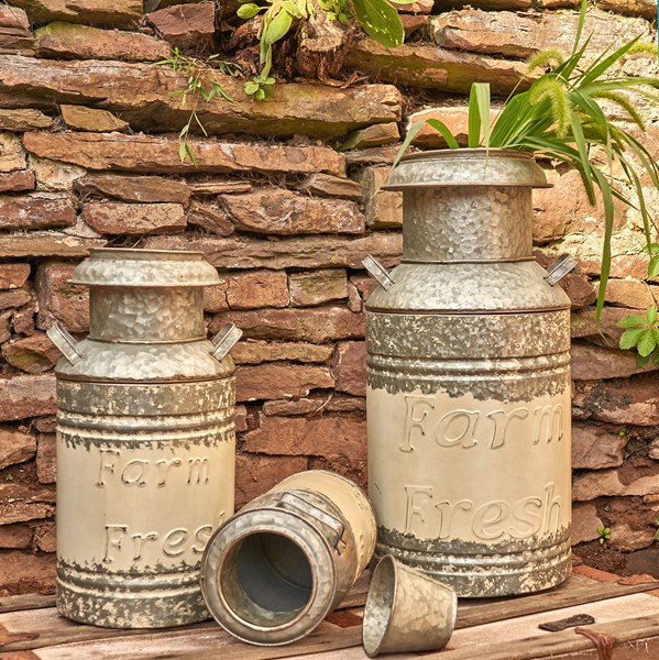 Set of 3 Galvanized Old Style Milk Can Planters in Cream