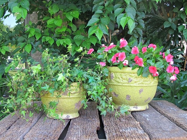 Set of 2 Round Flower Planters in Green