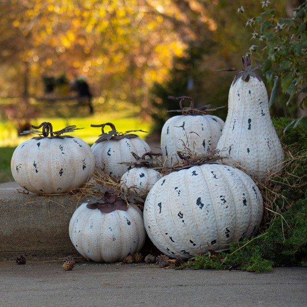 Set of 7 Rustic White Pumpkin Decorations